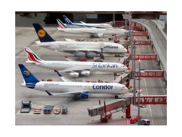 空运进口报关口岸卫生许可证核发告知承诺改革